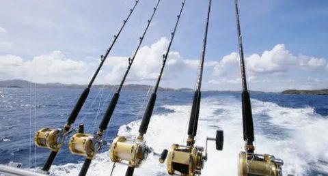 fishing rod accessories